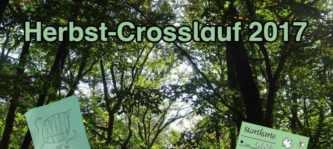 Herbst-Crosslauf