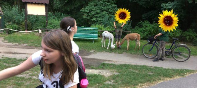 Ausflug in den Zoo von Poznań